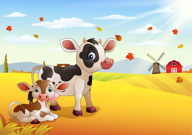 Красивые картинки коровы для детей и малышей - сборка 19
