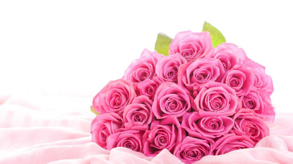 Красивые картинки роз на весь экран на рабочий стол - подборка 13
