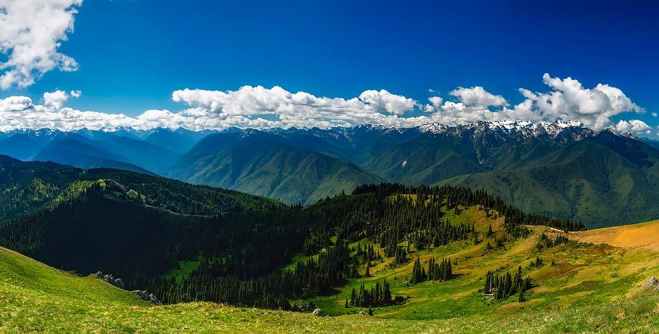 Красивые летние пейзажи природы - удивительные фотографии 17