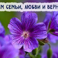 Красивые открытки и картинки С Днем Семьи - милая подборка 11