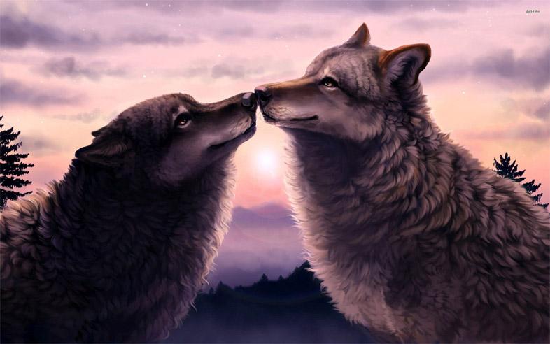Прикольные и красивые арт картинки волка. Нарисованный волк, фэнтези 13