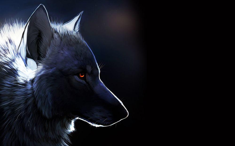 Прикольные и красивые арт картинки волка. Нарисованный волк, фэнтези 15