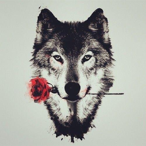 Прикольные и красивые арт картинки волка. Нарисованный волк, фэнтези 18