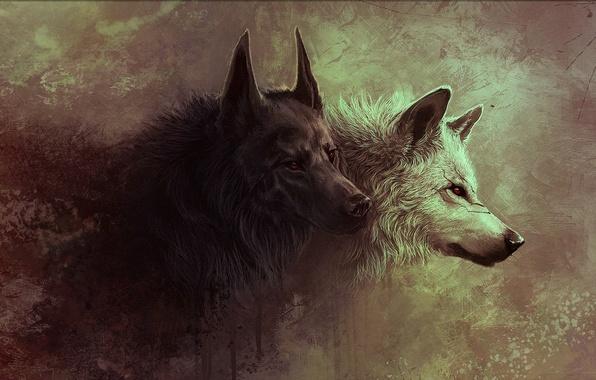 Прикольные и красивые арт картинки волка. Нарисованный волк, фэнтези 8