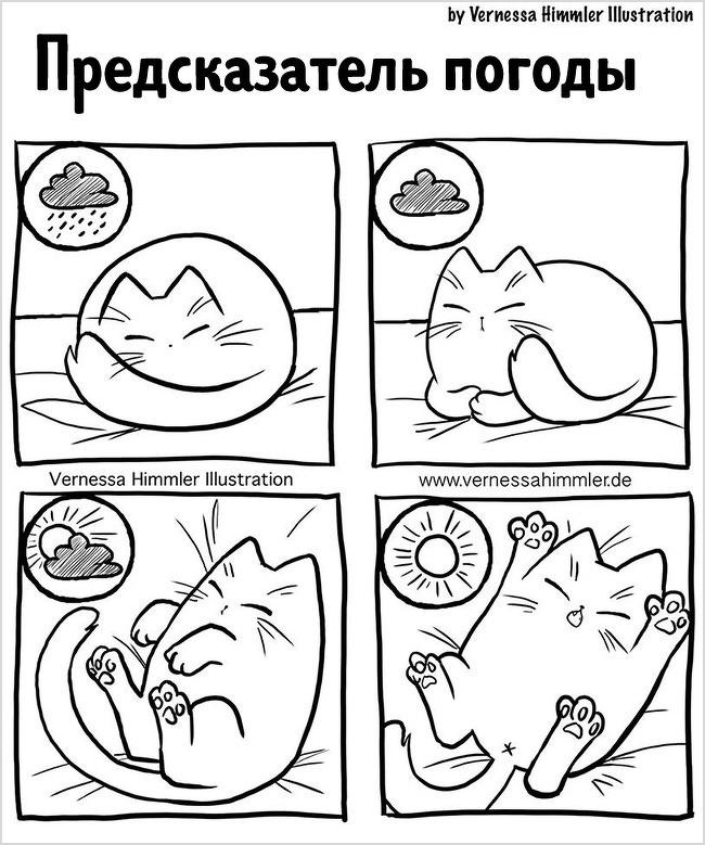 18 прикольных комиксов, в которых себя узнает каждый владелец кота - подборка 3