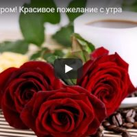 Видео с добрым утром и хорошим днем - подборка роликов