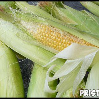 Как варить кукурузу в початках - лучший рецепт приготовления 1