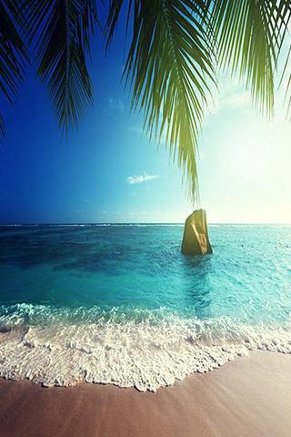 Красивые и прикольные картинки моря на телефон на заставку 14