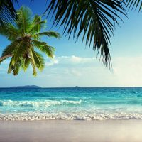 Красивые и прикольные картинки моря на телефон на заставку 8