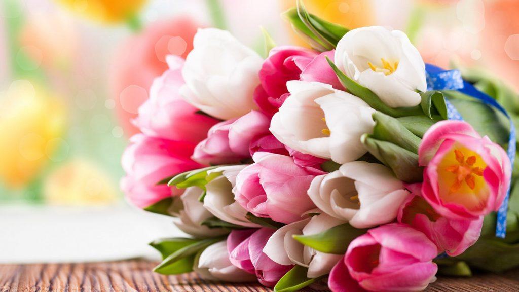 Красивые картинки на рабочий стол тюльпаны - подборка 8