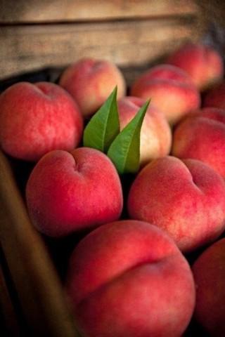 Красивые картинки на телефон фрукты - самые прикольные, сборка 15