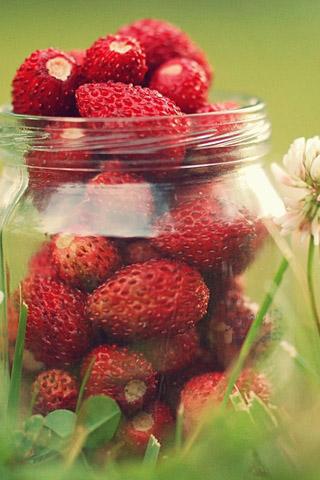 Красивые картинки на телефон фрукты - самые прикольные, сборка 2