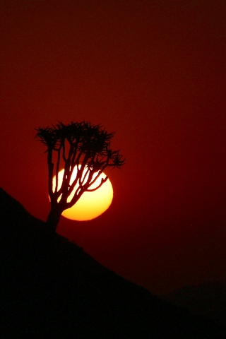 Крутые и красивые картинки на телефон закат, закат Солнца 22