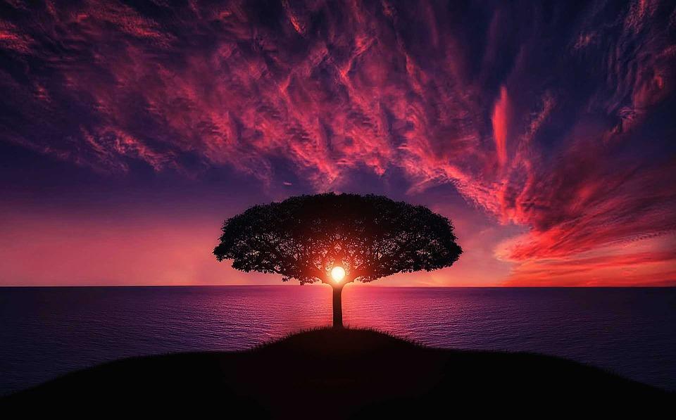 Невероятный и красивый закат Солнца летом - картинки и изображения 12