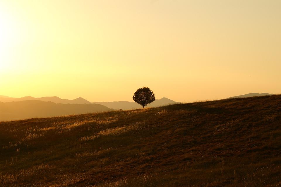 Невероятный и красивый закат Солнца летом - картинки и изображения 8