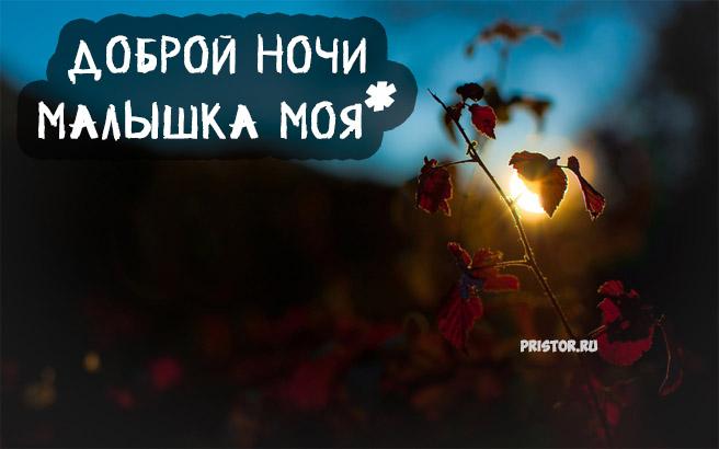 Доброго вечера и спокойной ночи - красивые картинки и открытки 6