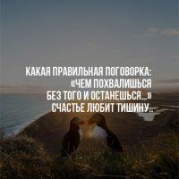 Интересные и мудрые цитаты о жизни со смыслом - подборка 9