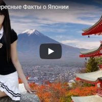 Интересные и удивительные факты о Японии - видео