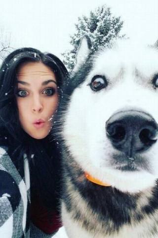 Классные и прикольные картинки, фото собак, щенков на телефон - подборка 17