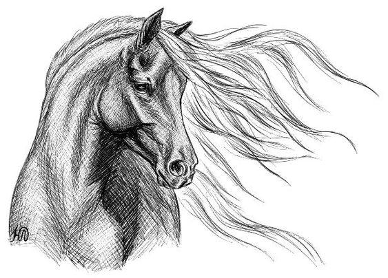 Красивые картинки для срисовки карандашом лошади или пони 10