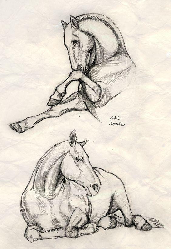 Красивые картинки для срисовки карандашом лошади или пони 22