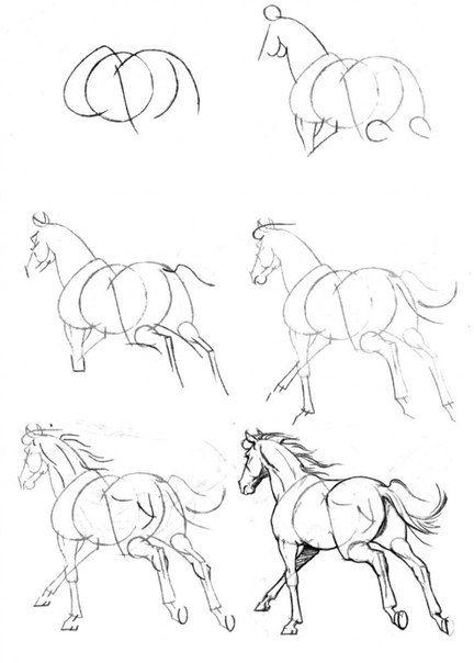 Красивые картинки для срисовки карандашом лошади или пони 6