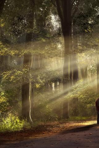 Красивые картинки природы для заставки телефона - подборка 9