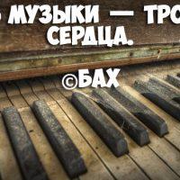 Красивые статусы и цитаты про музыку со смыслом - подборка 7