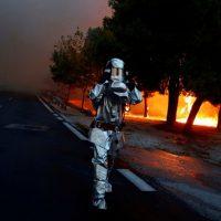 Масштабные лесные пожары в Греции - новости с фото 2