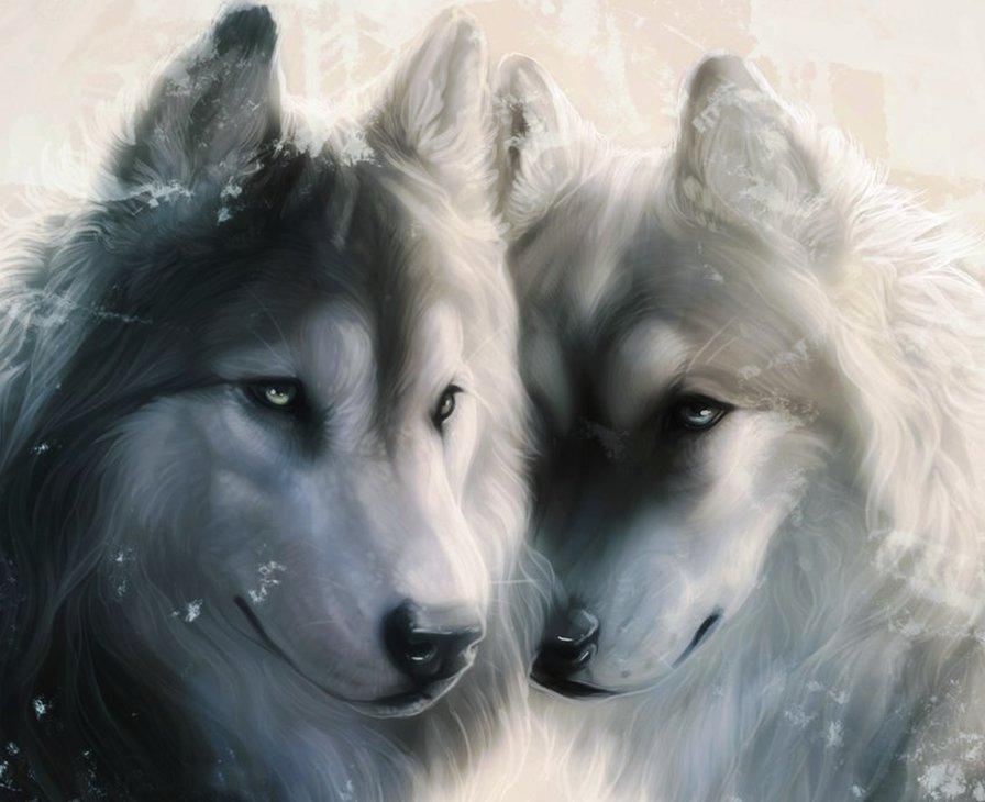 Очень красивые картинки волка и волчицы - подборка изображений 10