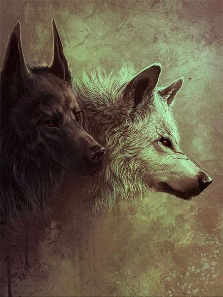 Очень красивые картинки волка и волчицы - подборка изображений 14