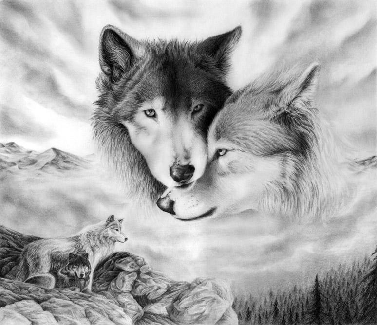 Очень красивые картинки волка и волчицы - подборка изображений 15