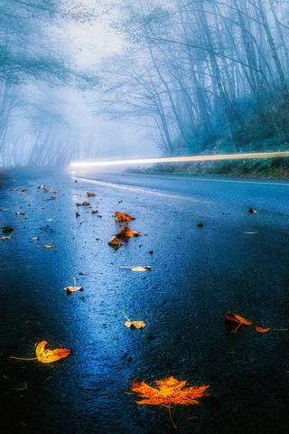 Красивые и необычные картинки на телефон Дождь - подборка 10