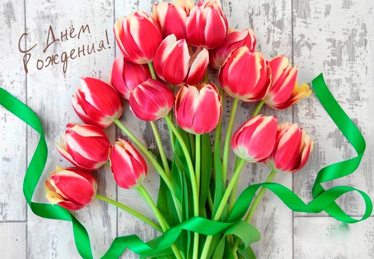 Марта, открытки с тюльпанами с днем рождения стильные