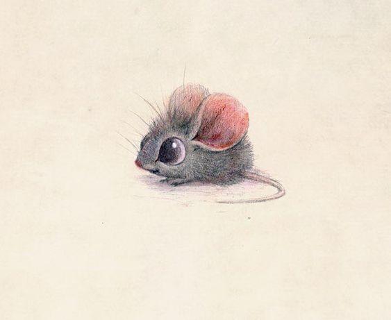 Легкие и простые картинки животных для срисовки - подборка для детей 1