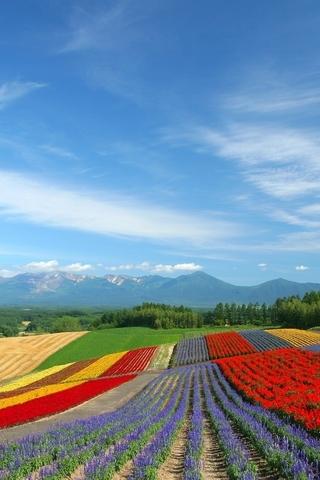 Невероятные и красивые пейзажи картинки на заставку телефона 2