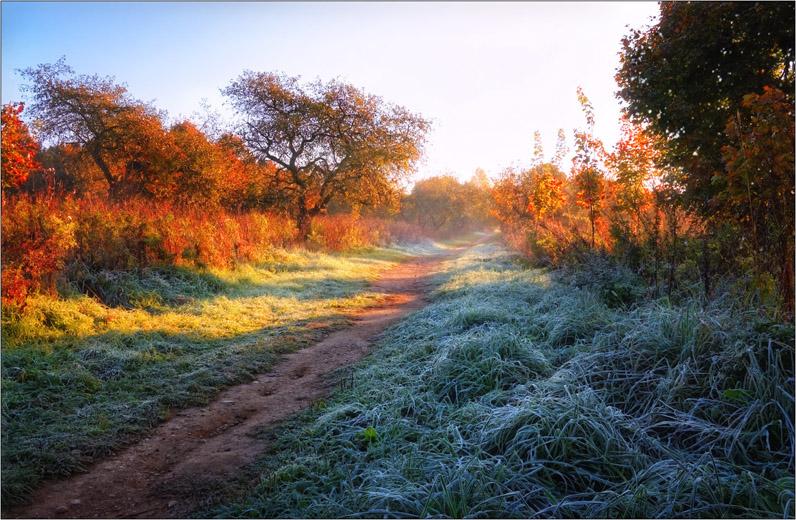 Осеннее утро, утро осенью - красивые и невероятные картинки 3