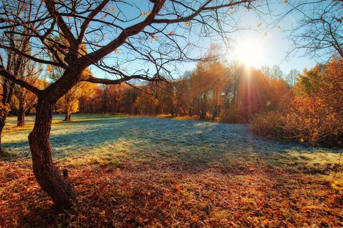 Осеннее утро, утро осенью - красивые и невероятные картинки 7