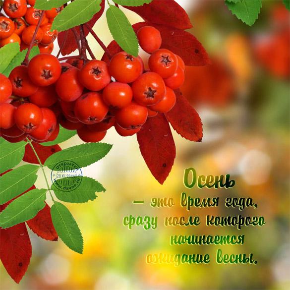 Поздравления с осенью (с первым днем осени) - картинки и открытки 10