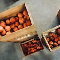 Россельхознадзор ограничит ввоз персиков и абрикосов из Сербии и Македонии - новости 1