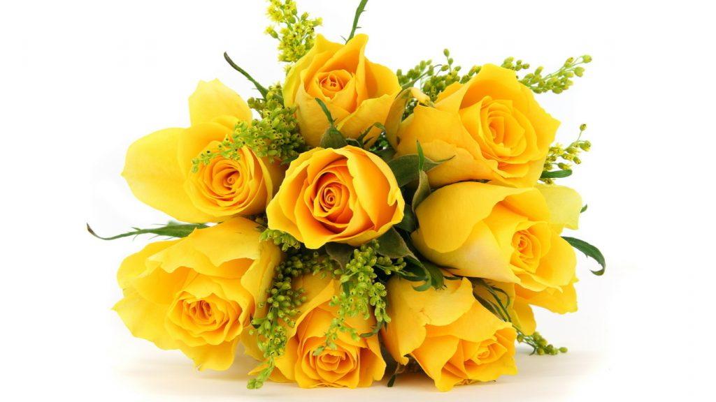 Удивительные картинки на рабочий стол Желтые розы - подборка 3