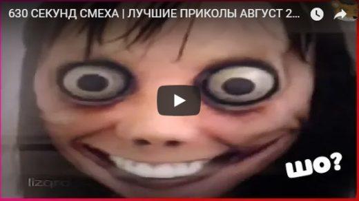 Веселые и прикольные видео ролики для настроения - сборка №134