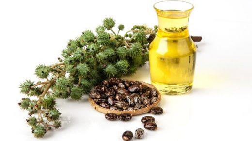 Касторовое масло - как ухаживать за кожей, волосами и ногтями 2