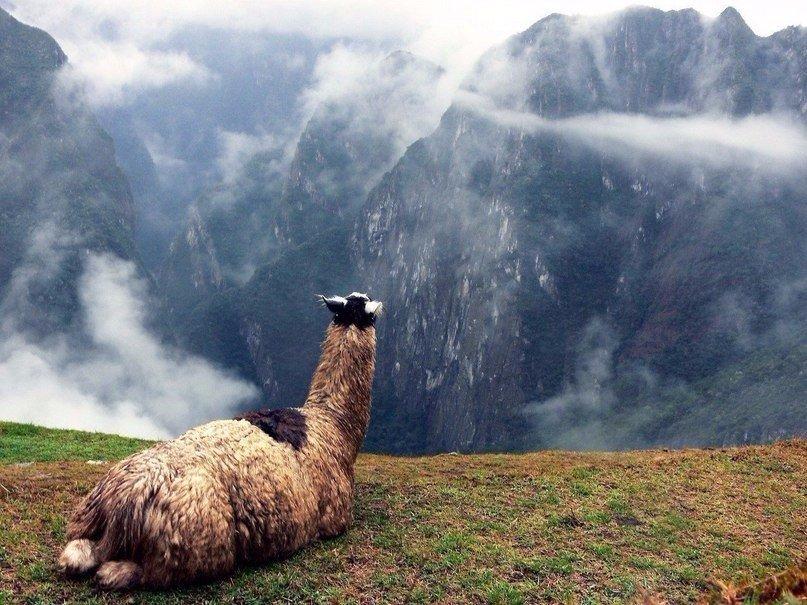 Красивые и невероятные картинки про отдых и путешествия - 30 фото 7