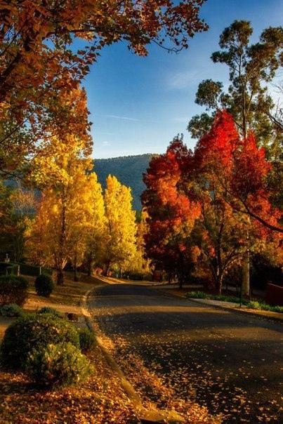 Красивые и удивительная осень. Подборка картинок 20 штук 19