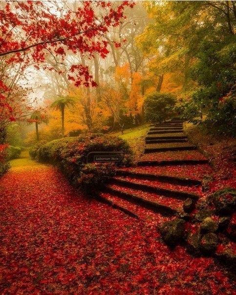 Красивые и удивительная осень. Подборка картинок 20 штук 3