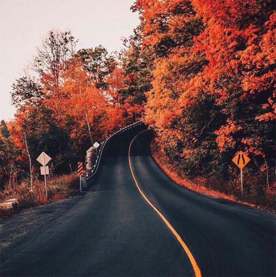 Красивые и удивительная осень. Подборка картинок 20 штук 4