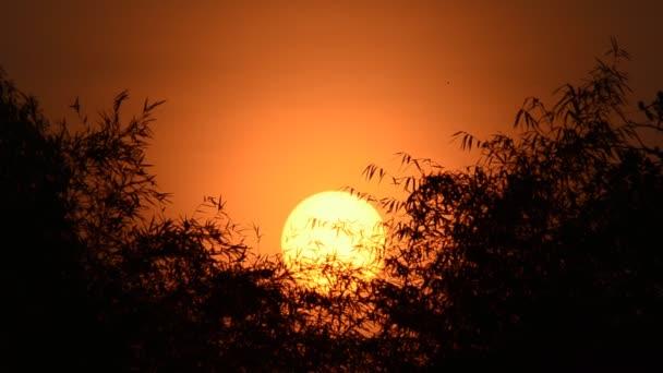 Красивые и удивительные картинки, фото Восход Солнца - подборка 12