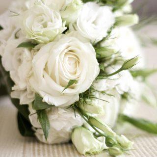 Красивые картинки цветов белые розы, удивительные букеты 14