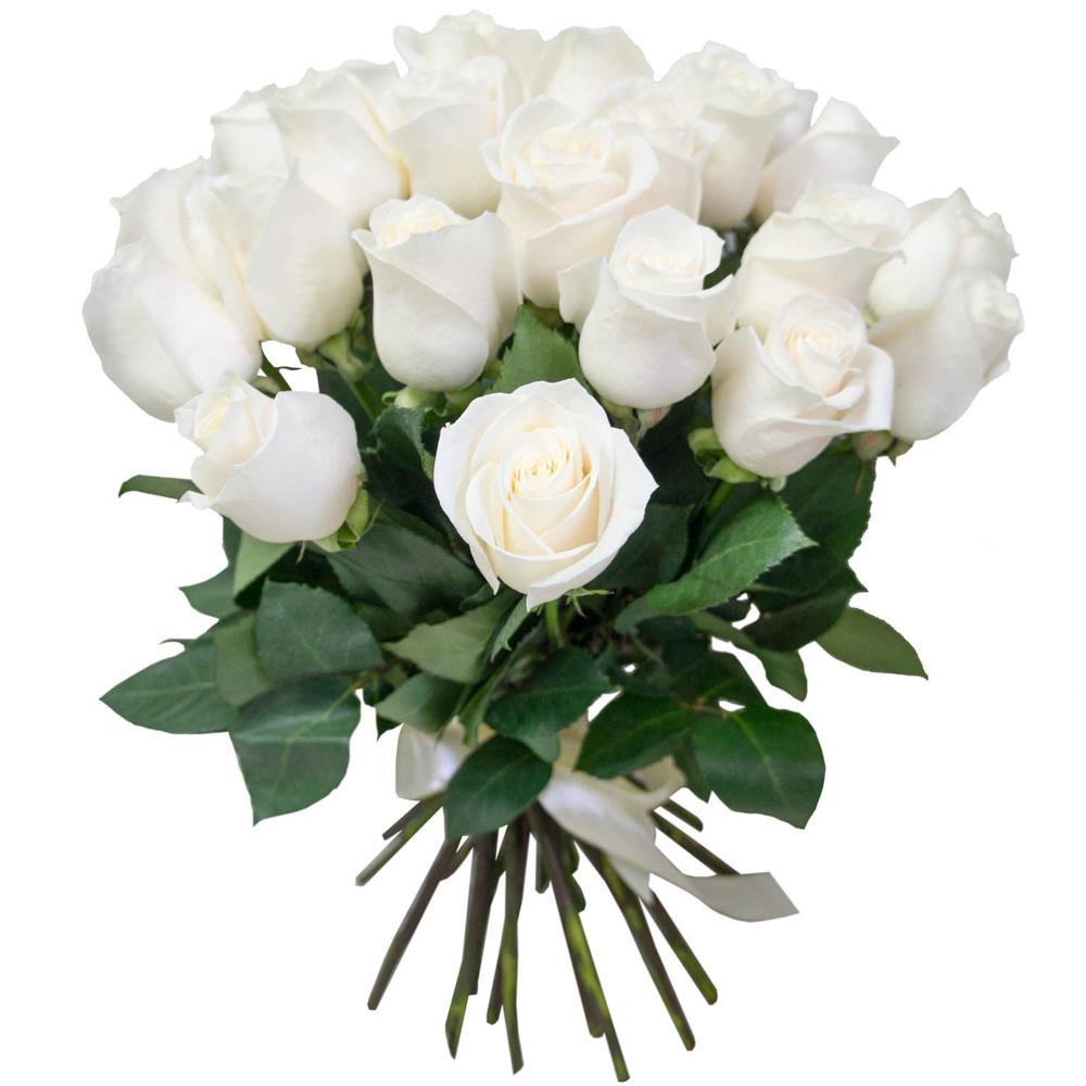Красивые картинки цветов белые розы, удивительные букеты 9